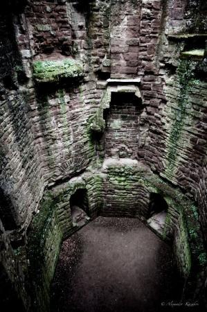 Goodrich, UK: внутри мох