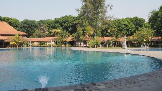 Singgasana Hotel Surabaya: pool