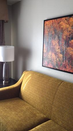 Homewood Suites by Hilton Charlotte Airport: photo1.jpg