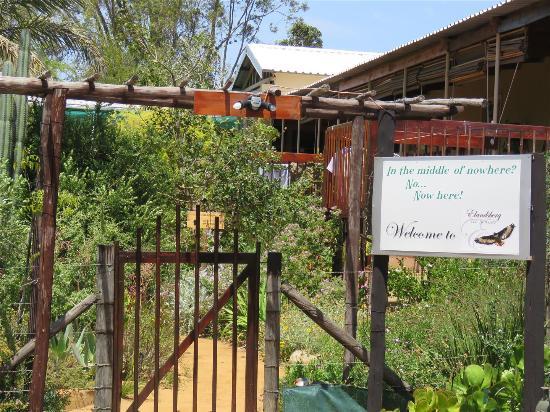 Elandsberg Eco Tourism : The home