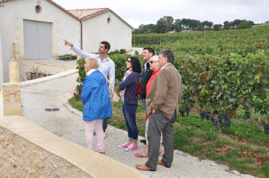 Saint Colomb de Lauzun, ฝรั่งเศส: Hugo showing us round the vines