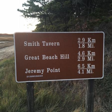 Great Island Trail: Great Island Hike