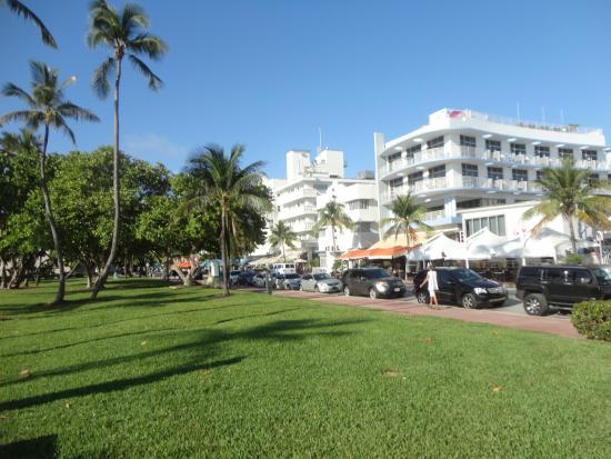 Ocean Hotel 사진