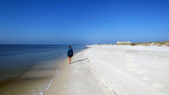 The Beach Club張圖片