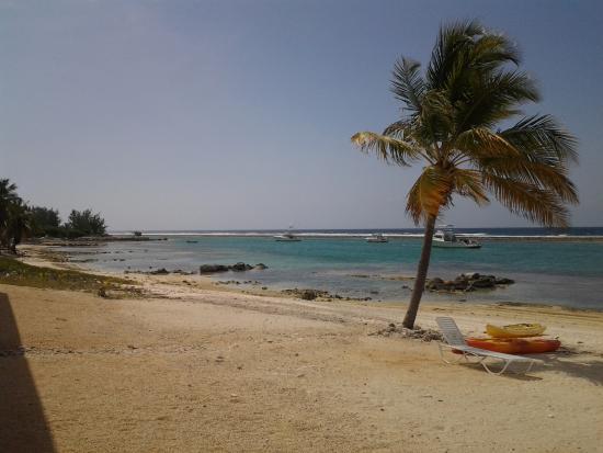 Brac Caribbean Beach Village Right Outside The Condo At