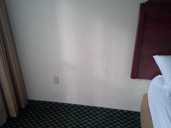 Homewood Suites by Hilton Sacramento-Roseville: Dirty Walls