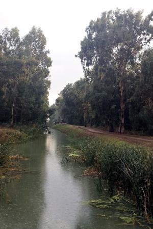 Qiryat Bialik, Israel: Река Нааман