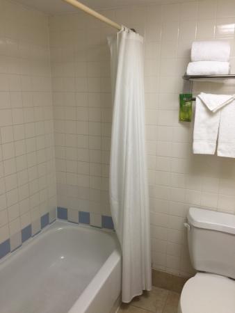 Hampton Inn Orlando International Drive/Convention Center: Bath