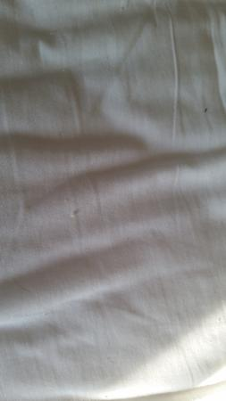 "Super 8 Fairfield : Crumbs on ""clean"" bed sheets"