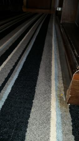 Super 8 Fairfield: Gross carpet in front of entertainment center