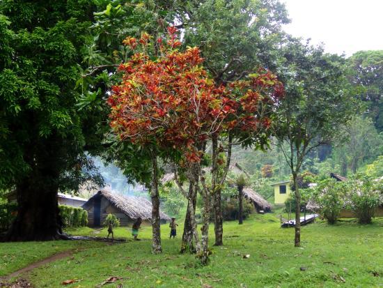 Pentecost Island, Vanuatu: Neighbouring village