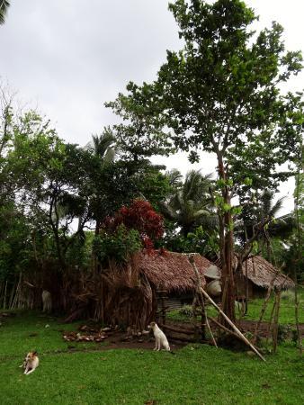 Pentecost Island, Vanuatu: Waterfall village