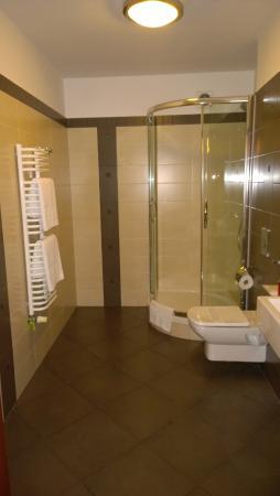 Benefis: bathroom