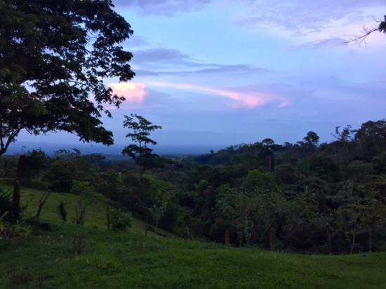 Finca Rio Perla: View from Casa Central