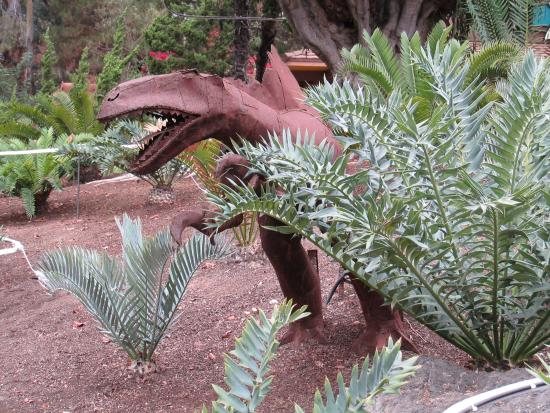 Cyads Picture Of Los Angeles Zoo Botanical Gardens Los Angeles Tripadvisor