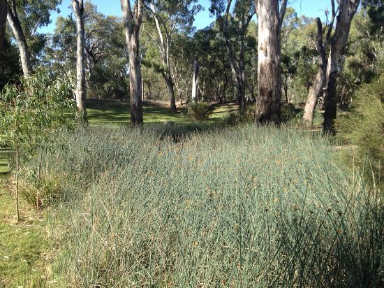 Quest Echuca: Another view of the Park