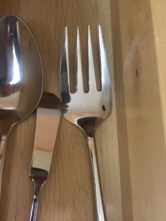 Massanutten, Вирджиния: mouse dropping hoping to be eaten the next time this fork is used