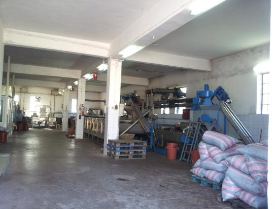 Castella Beach: Machines for making olive oil