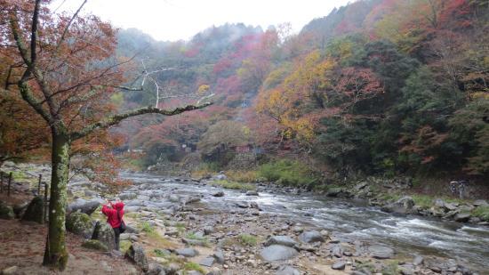 Aichi Prefecture, Japan: Tomoe River , Korankei