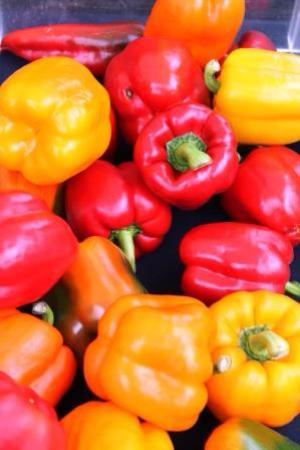Parnell Farmers' Market: Peppers