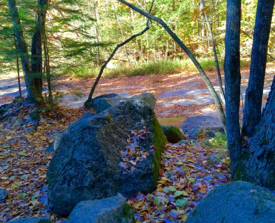 Franconia, NH: Rocks and Trees