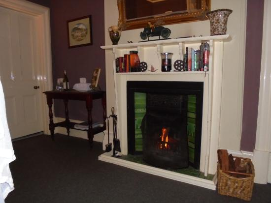 Broomelea Bed & Breakfast: Open fireplace in our room