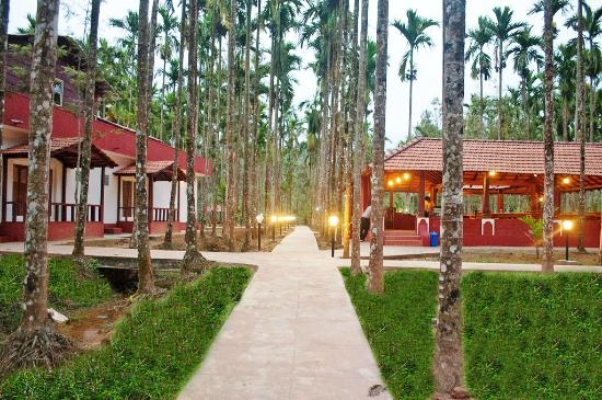 Worst Hotel To Stay Review Of La Flora Prakruth Resort Coorg Tripadvisor