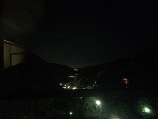 Hakonenomori Okada: 部屋からの景色