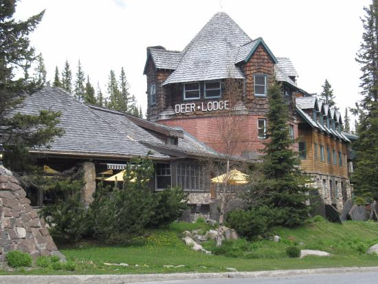 Deer lodge lake louise alberta hotel reviews for Lake louise cabin rentals