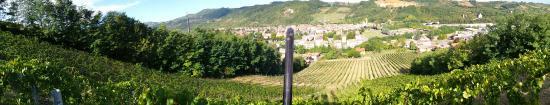 Ponte dell'Olio, Italy: Panoramica della vigna Armella