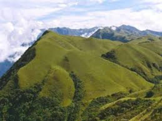 Nilgiri, India: Mukurthi National Park is a 78.46 km² protected area located in the western corner of the Nilgir