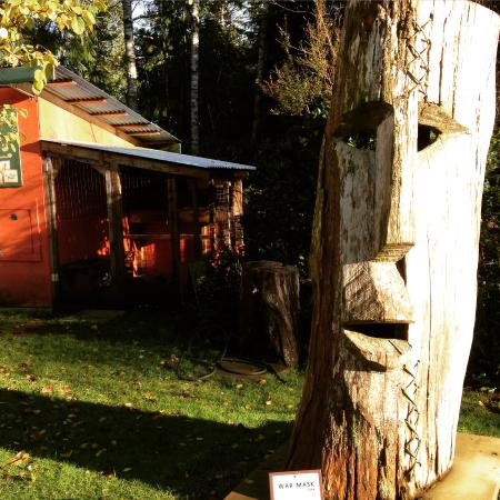 The Ecolodge at the Tofino Botanical Gardens: gardens