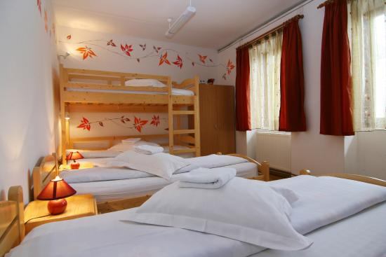 Photo of Mara Hostel Brasov