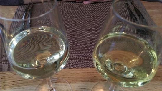 Chardonnay si Sauvignon Blanc. La Uptown