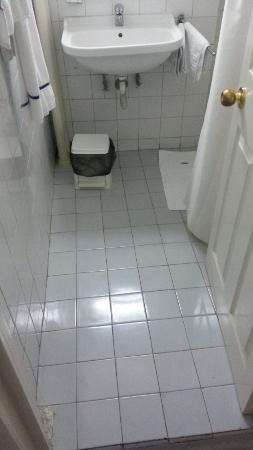Minerva Hotel : Ingresso bagno (tazza e doccia sulla destra in 5 mq)