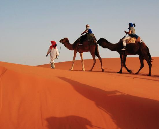 Desert Tours Morocco - Day Trips: morocco