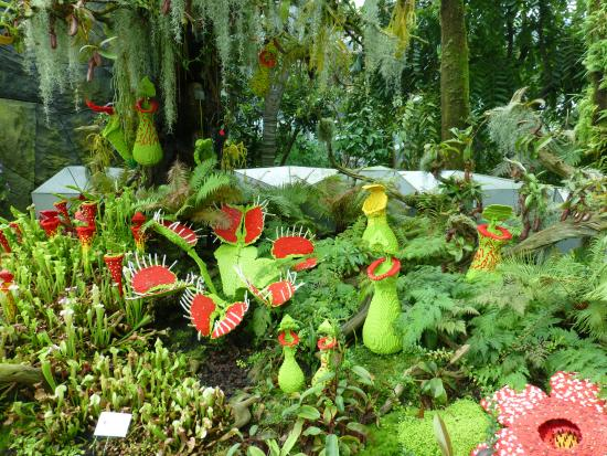 Gardens By The Bay: Lego Flowers