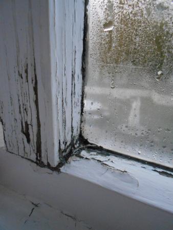 Riverside Hotel: rotten window frame