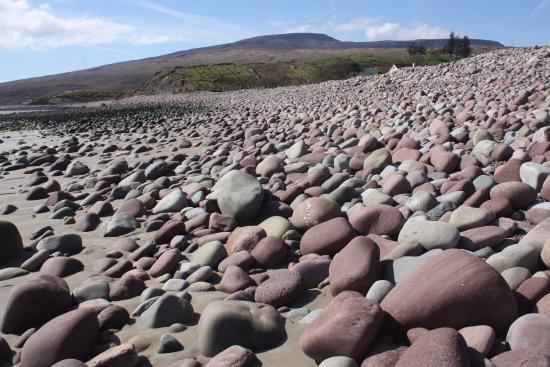 Mulranny Saltmarsh