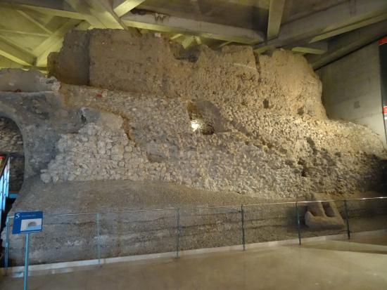 Музей - Picture of Museo del Foro de Caesaraugusta, Zaragoza - TripAdvisor
