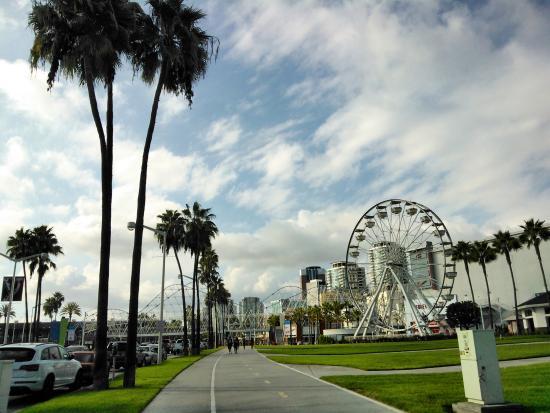 Downtown Long Beach Acuario De
