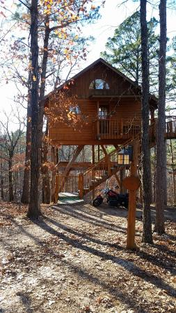 Treehouse Cottages: 20151124_152623_large.jpg