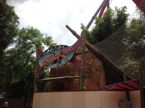 Sheikra Picture Of Busch Gardens Tampa Tampa Tripadvisor