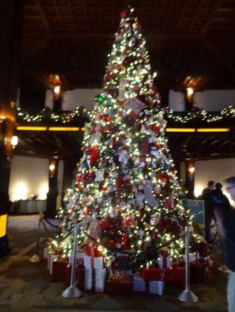 Hotel Del Coronado Christmas Tree 2020 Hotel del Coronado Christmas Tree   Picture of Hotel del Coronado