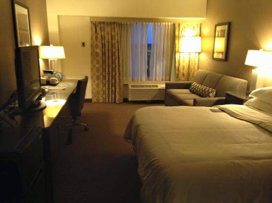 Sheraton Needham Hotel Standard Room