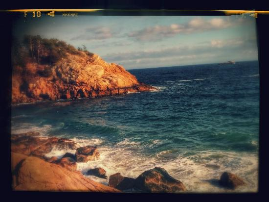 Manchester-by-the-Sea, MA: Singing Beach