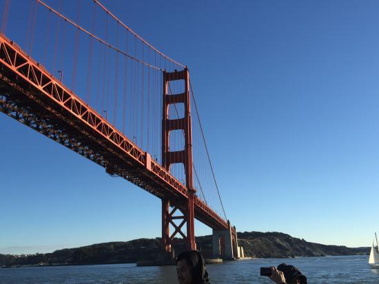 Sailing Under The Golden Gate Bridge Picture Of Blue