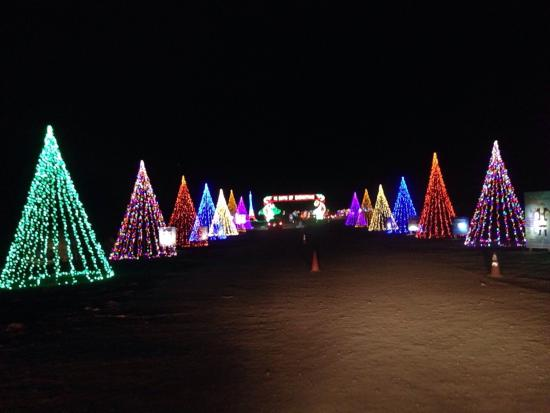 The holiday light show at Shady Brook Farm - Picture of Shady ...