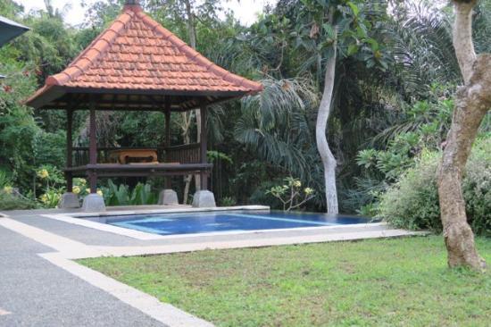 Alas Petulu Cottages: Upper pool