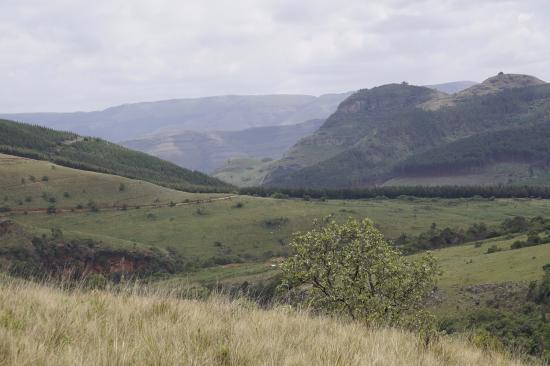 Graskop, جنوب أفريقيا: Views along the way
